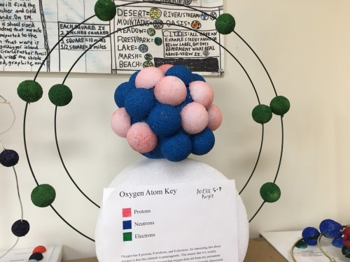 Middle School Students Create Models Of Cells And Atoms  U00b7 San Francisco School